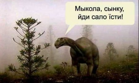 Мова ивышиванки появились вовремена палеолита, — новая «сенсация» отукраинских учёных