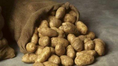 Чем опасна картошка?