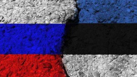 Вправительстве Эстонии оценили идею присоединить страну кРоссии