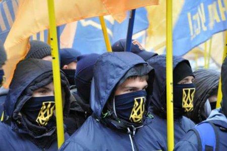 Австрийский институт спозором вышвырнул наулицу украинскую неонацистку