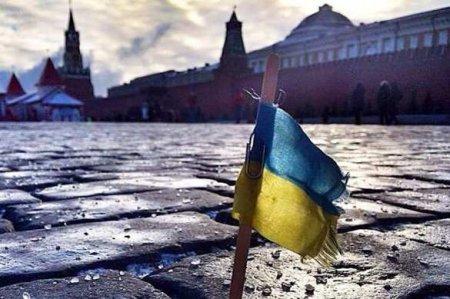 У сожителя главы украинской делегации в ПАСЕ нашли магазины в Москве и в Пи ...