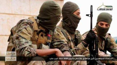 Взрывать и убивать: террористическая группировка, опутавшая сетями Крым и всю Россию (ВИДЕО)