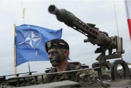 В центре при НАТО «разгорелась война» из-за России, — Politico