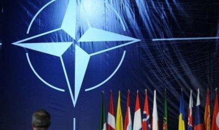НАТО провело экстренное совещание по Донбассу, Пентагон обещает оказать поддержку Киеву