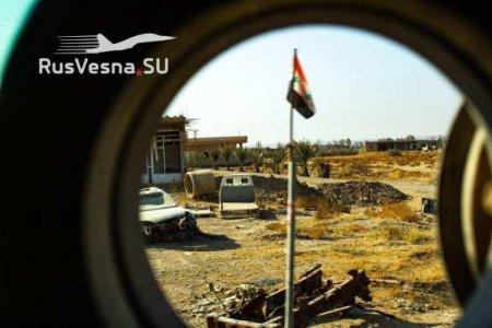 Разорвать на части: подлые планы врагов по Сирии (ВИДЕО)