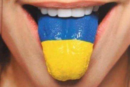 У Зеленского заявили, что на Украине есть «украинский» русский язык (+ВИДЕО)