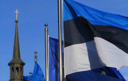 «Сильный» союзник: Эстония пообещала помочь Украине впопытках вступить вЕС