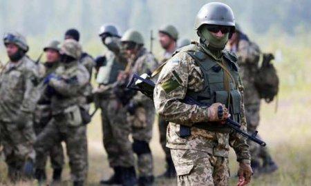 Каратели ВСУ укрепляют позиции и не могут выбраться с Донбасса (ФОТО, ВИДЕО ...