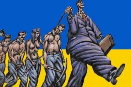 Мы признали Запад нашими начальниками: на Украине рассказали о «катастрофической дурости» страны (ВИДЕО)