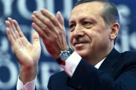 Эрдоган объявил об обнаружении крупного газового месторождения в Чёрном море