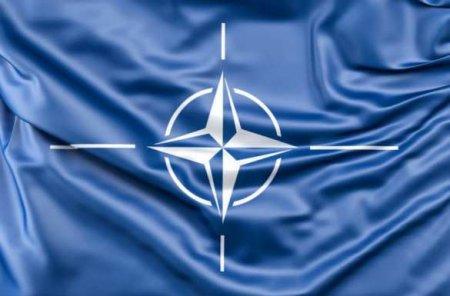 Не приехав в Москву генсек НАТО показал истинные намерения альянса, — Захарова