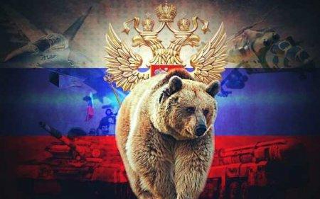 Запретили медведя и Russia: МОК вмешался в олимпийскую программу российских синхронисток
