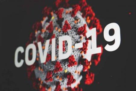 В ДНР зарегистрирован 43611-й случай COVID-19
