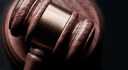 Суд арестовал провокаторшу из«Пусси Райт»