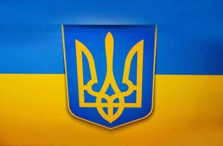 «Перемога»: Под Киевом на поле высадили рекордно большой герб Украины (ФОТО, ВИДЕО)