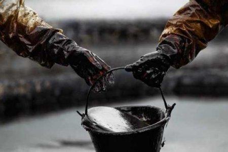 Экологическая катастрофа вСША: вокеан попали тысячи баррелей нефти (ФОТО, ВИДЕО)